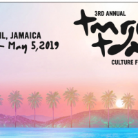 3rd Annual: Tomorrow - Today Culture Fest