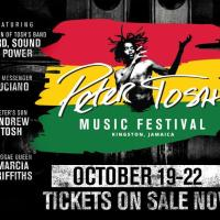 Peter Tosh: Music Festival