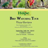 Bird Watching at Hope Gardens