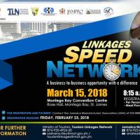 Linkages Speed Networking