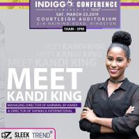 Indiggo Conference