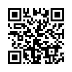 QR for VYBE JA